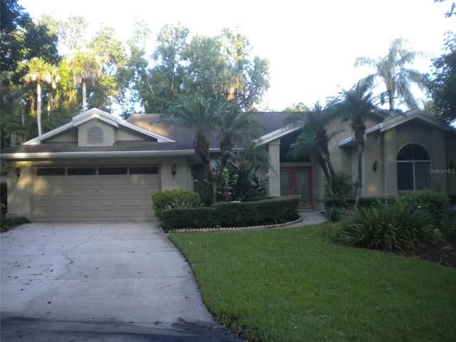 203 Waterwood Drive, Yalaha, FL 34797 (MLS #O5962689) :: RE/MAX LEGACY