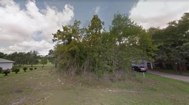 1465 E Saint James Loop, Inverness, FL 34453 (MLS #O5962766) :: Young Real Estate