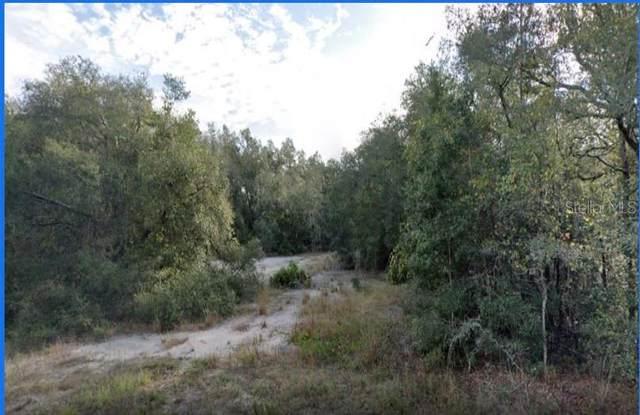 9148 Native Rock Drive, Webster, FL 33597 (MLS #O5962797) :: The Hesse Team