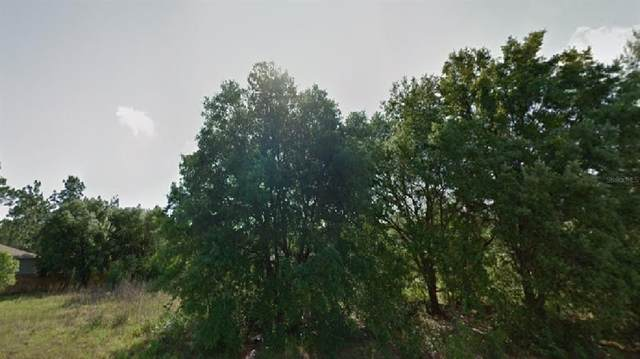 8223 N Empire Avenue, Citrus Springs, FL 34433 (MLS #O5962801) :: Young Real Estate