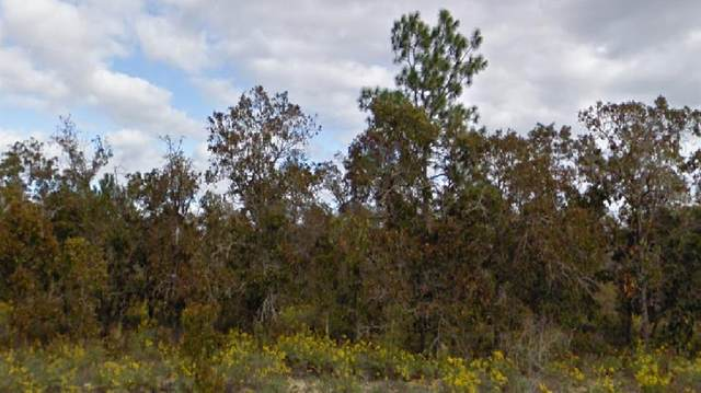 Pennington Drive, Chipley, FL 32428 (MLS #O5962803) :: Team Bohannon