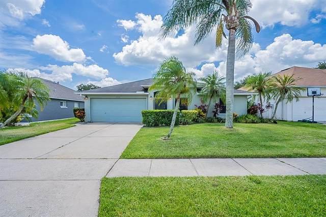 6450 Nona Court, Port Orange, FL 32128 (MLS #O5962921) :: Zarghami Group