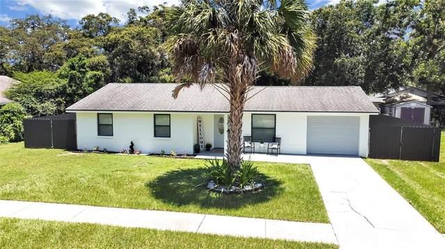 913 Kirkcaldy Way, Valrico, FL 33594 (MLS #O5962939) :: Vacasa Real Estate