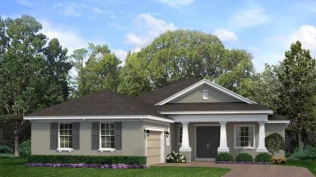 457 Wedgeworth Lane, Deland, FL 32724 (MLS #O5962955) :: Pepine Realty