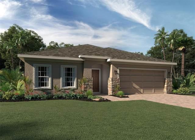 4901 Olivia Court, Saint Cloud, FL 34772 (MLS #O5962958) :: Orlando Homes Finder Team