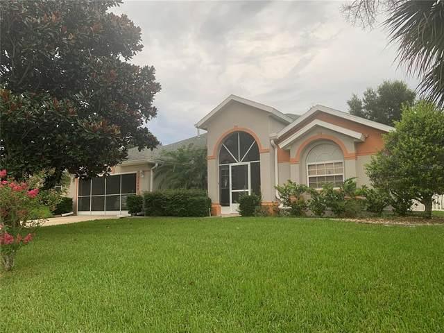 13008 SW Sandy Pine Lane, Clermont, FL 34711 (MLS #O5962976) :: Expert Advisors Group