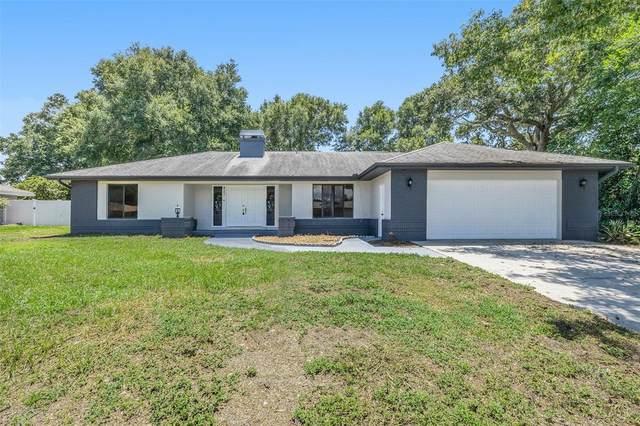 4203 Custer Drive, Valrico, FL 33594 (MLS #O5963049) :: Vacasa Real Estate