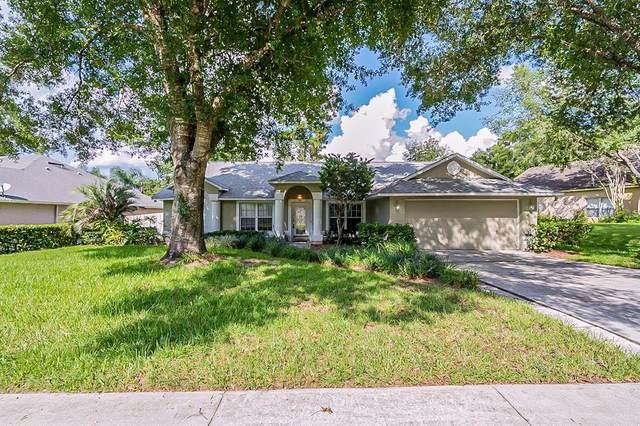 1675 Imperial Palm Drive, Apopka, FL 32712 (MLS #O5963139) :: Expert Advisors Group