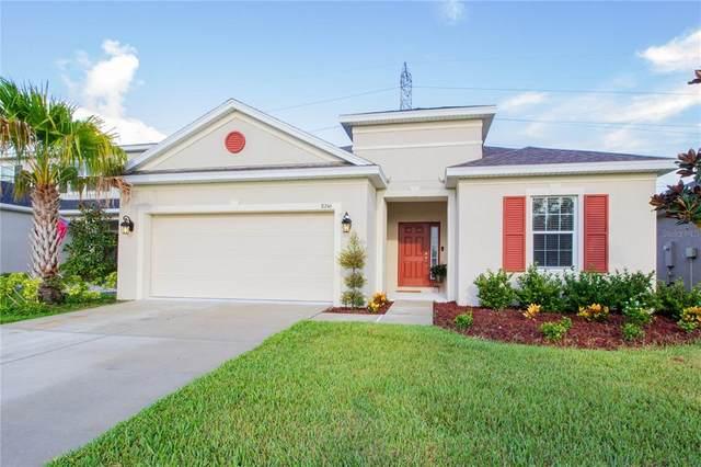 8246 Willow Beach Drive, Riverview, FL 33578 (MLS #O5963222) :: Expert Advisors Group
