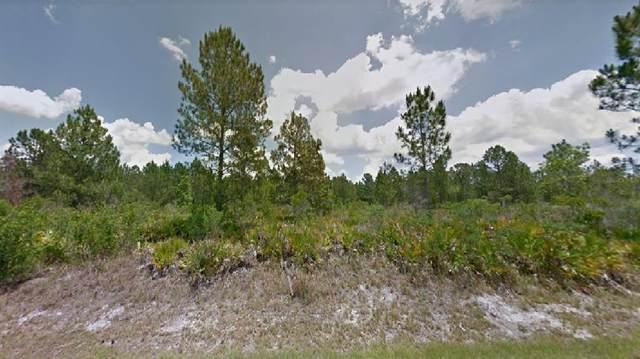9229 Oviedo Street, Sebring, FL 33872 (MLS #O5963338) :: Young Real Estate