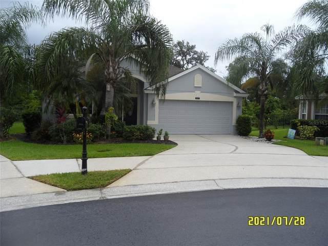 2620 Black Lake Boulevard, Winter Garden, FL 34787 (MLS #O5963361) :: Expert Advisors Group
