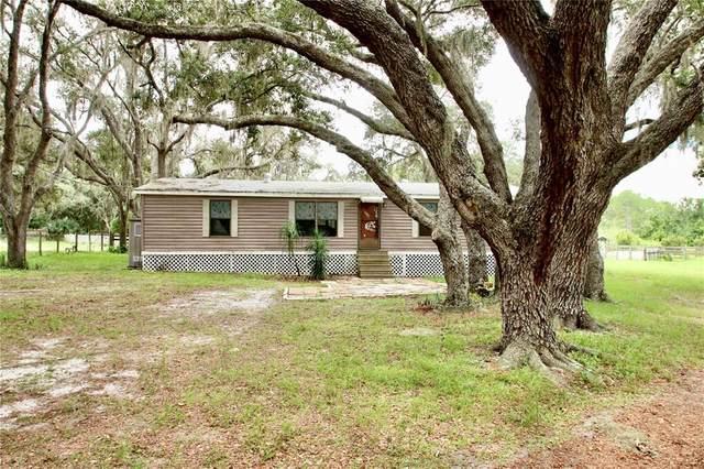 5650 Stagecoach Road, Polk City, FL 33868 (MLS #O5963575) :: Zarghami Group