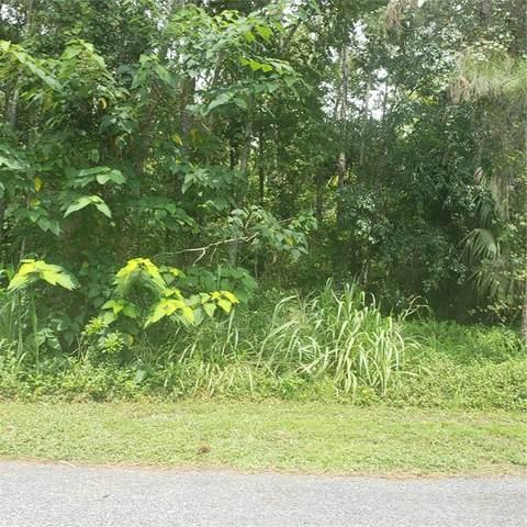 Fearon Avenue, Mount Dora, FL 32757 (MLS #O5963699) :: Globalwide Realty