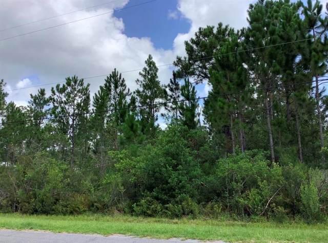 Lansdowne Street, Orlando, FL 32833 (MLS #O5963848) :: Gate Arty & the Group - Keller Williams Realty Smart