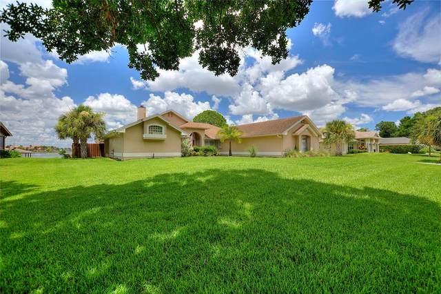 7645 Pointview Circle, Orlando, FL 32836 (MLS #O5963958) :: Zarghami Group