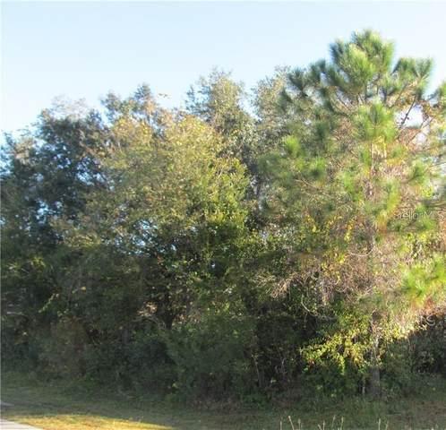Versailles Lane, Kissimmee, FL 34759 (MLS #O5964286) :: Team Turner
