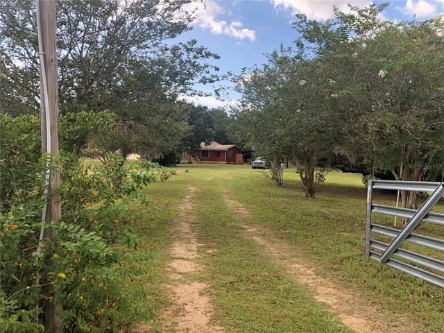 18001 Phil C Peters Road, Winter Garden, FL 34787 (MLS #O5965108) :: Zarghami Group
