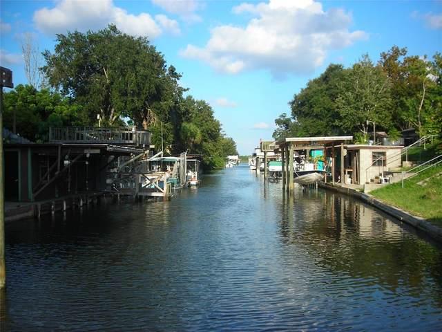 133 Douglas Street, Edgewater, FL 32141 (MLS #O5965309) :: Premium Properties Real Estate Services