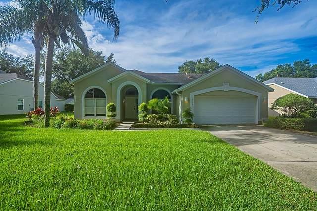 10206 Pointview Court, Orlando, FL 32836 (MLS #O5966516) :: Zarghami Group