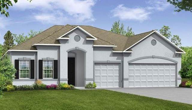15227 Silver Eagle Road, Groveland, FL 34736 (MLS #O5967011) :: The Curlings Group