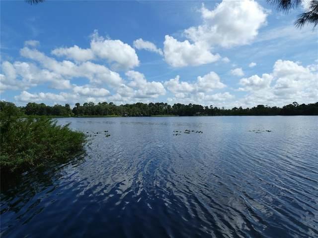 Mitchel Way, Eustis, FL 32736 (MLS #O5967216) :: Premium Properties Real Estate Services