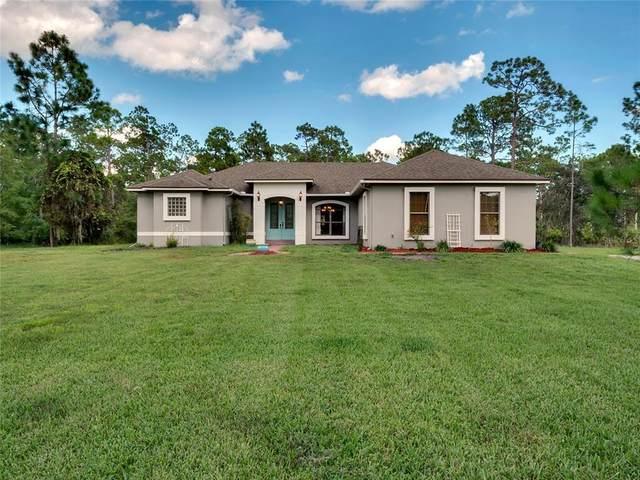 13215 Lacebark Pine Road, Orlando, FL 32832 (MLS #O5967760) :: Vacasa Real Estate