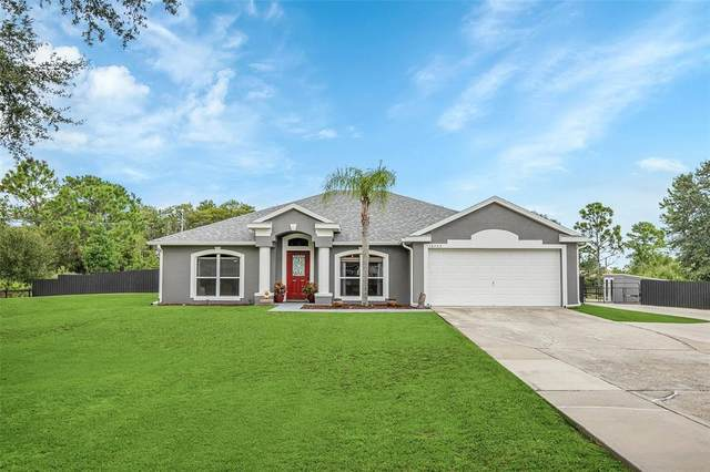 19703 Sabal Street, Orlando, FL 32833 (MLS #O5967925) :: Zarghami Group