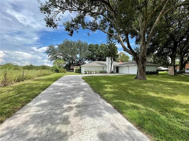 1155 Eloise Loop Road, Winter Haven, FL 33884 (MLS #O5968267) :: Cartwright Realty