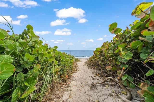 Vero Beach, FL 32963 :: Zarghami Group