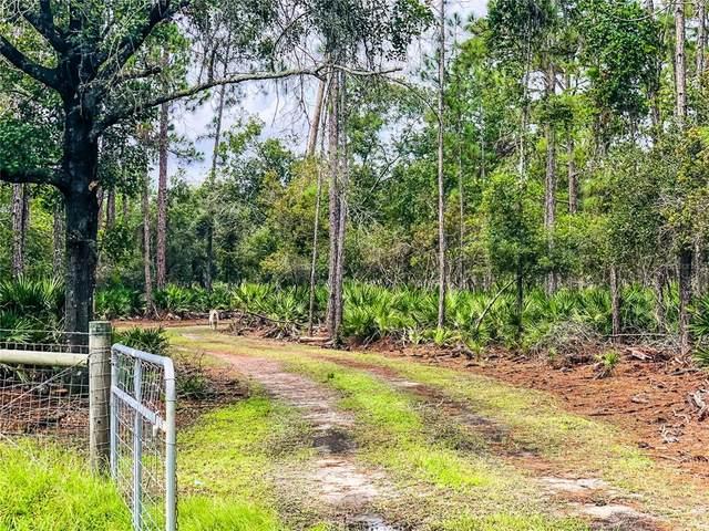 Kijik Trail, Groveland, FL 34736 (MLS #O5968355) :: The Hustle and Heart Group