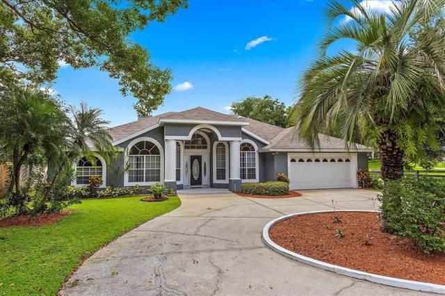 220 1ST Street, Ocoee, FL 34761 (MLS #O5968927) :: Zarghami Group