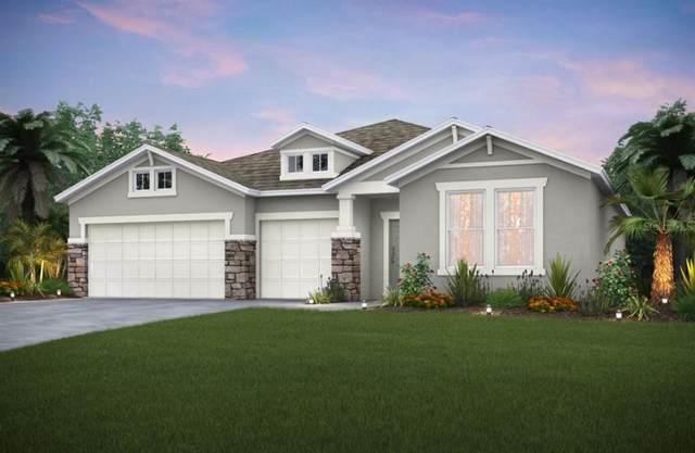 2117 Weatherly Way, Orlando, FL 32820 (MLS #O5968995) :: Vacasa Real Estate