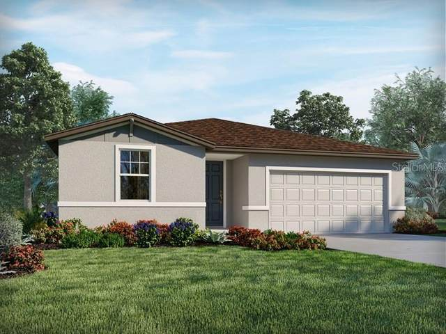 1251 Mcneal Road, Spring Hill, FL 34609 (MLS #O5969589) :: Everlane Realty