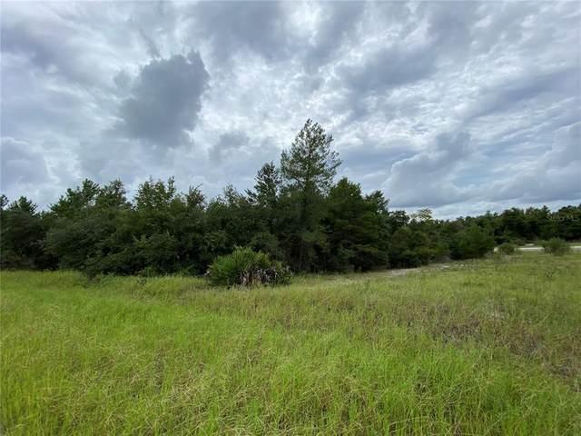 1362 Homosassa Drive, Poinciana, FL 34759 (MLS #O5969629) :: GO Realty