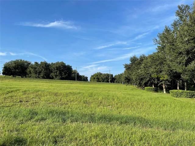 18249 Great Blue Heron Drive, Groveland, FL 34736 (MLS #O5969637) :: Zarghami Group