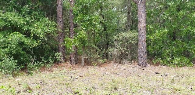 9746 N Country Club Way, Citrus Springs, FL 34434 (MLS #O5969726) :: Everlane Realty