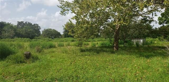 36109 Arabian Way, Eustis, FL 32736 (MLS #O5969733) :: Bustamante Real Estate