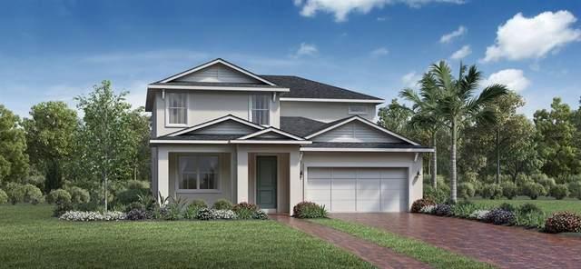 2568 Park Ridge Street, Apopka, FL 32712 (MLS #O5970024) :: Bustamante Real Estate