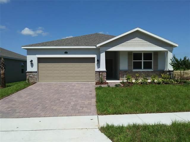 1499 Grassland Avenue, Saint Cloud, FL 34771 (MLS #O5970162) :: Zarghami Group