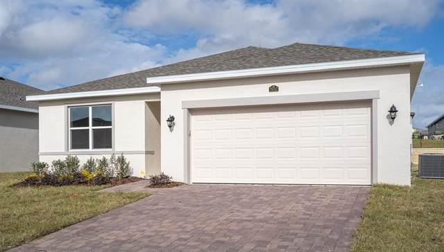 1493 Grassland Avenue, Saint Cloud, FL 34771 (MLS #O5970163) :: Zarghami Group