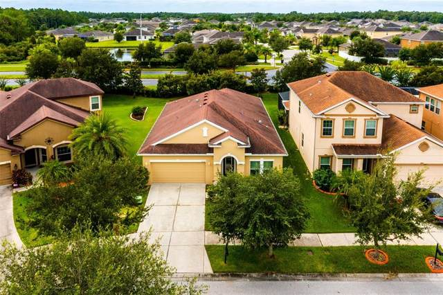 20227 Autumn Fern Avenue, Tampa, FL 33647 (MLS #O5970199) :: Team Bohannon