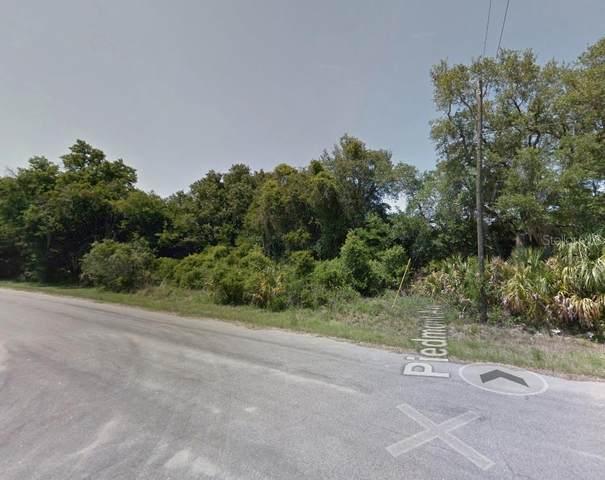 15448 Piedmont Avenue, Port Charlotte, FL 33954 (MLS #O5970251) :: RE/MAX Elite Realty