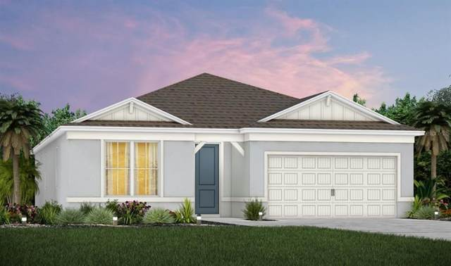 5190 Royal Point Avenue, Kissimmee, FL 34746 (MLS #O5970328) :: Cartwright Realty