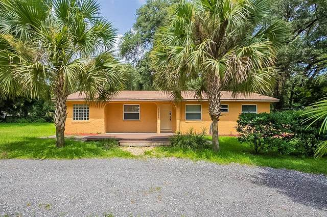 31061 Lochmore Circle, Mount Plymouth, FL 32776 (MLS #O5970411) :: Vacasa Real Estate
