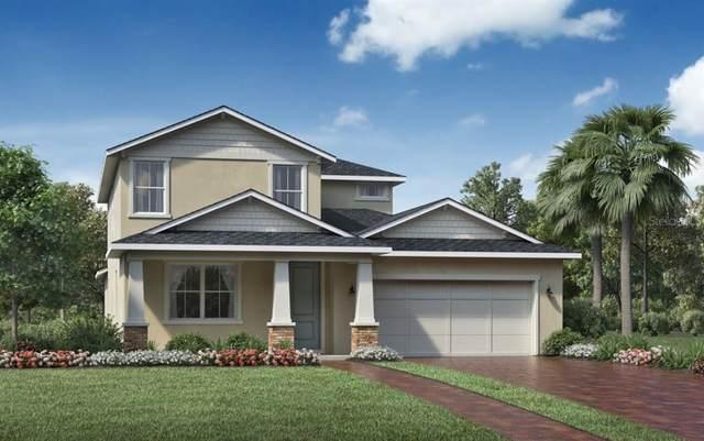 2576 Park Ridge Street, Apopka, FL 32712 (MLS #O5970571) :: Bustamante Real Estate