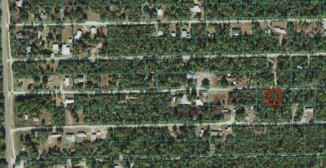 NE 237TH Place, Fort Mc Coy, FL 32134 (MLS #O5970619) :: Zarghami Group