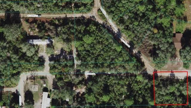 SE 142 Place, Umatilla, FL 32784 (MLS #O5970679) :: Everlane Realty