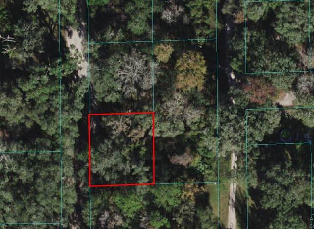 NE 42ND Avenue, Citra, FL 32113 (MLS #O5970680) :: The Paxton Group