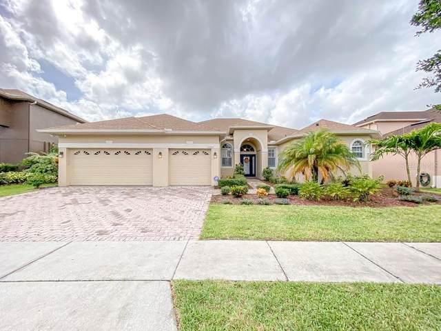 17722 Ashford Grande Way, Orlando, FL 32820 (MLS #O5970784) :: Zarghami Group