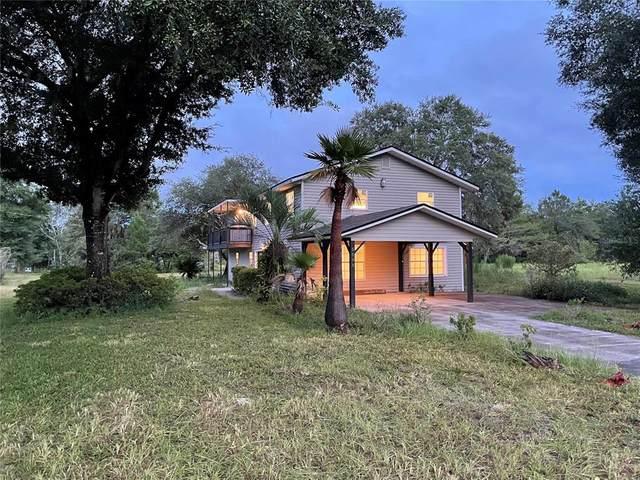 5595 Old Perkins Highway, De Leon Springs, FL 32130 (MLS #O5970812) :: Everlane Realty